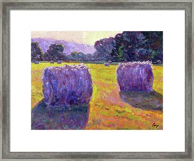 Bales Of Hay Framed Print by Michael Camp