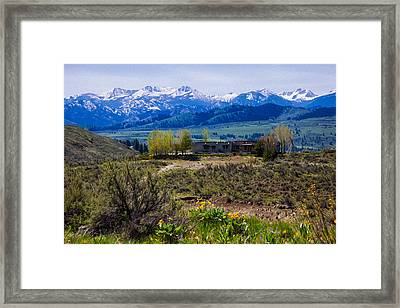 Balsamroot Flowers And North Cascade Mountains Framed Print by Omaste Witkowski