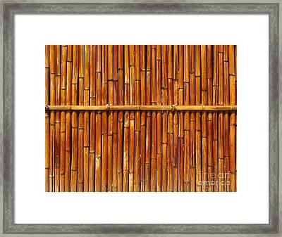 Bamboo Fence Framed Print by Yali Shi
