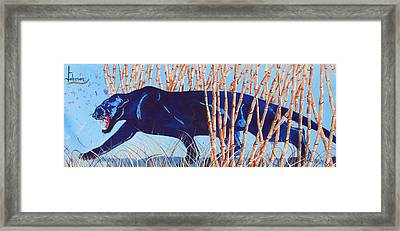 Bamboo Panther Framed Print by Larry  Johnson