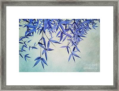 Bamboo Susurration Framed Print by Priska Wettstein