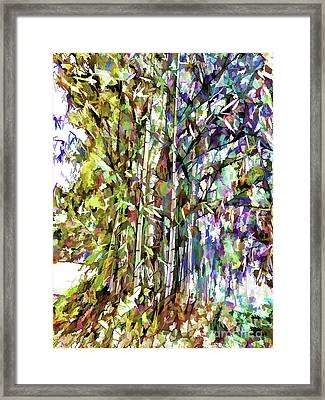 Bamboo Trees In Park Framed Print by Lanjee Chee