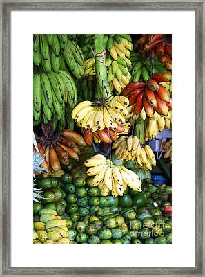 Banana Display. Framed Print by Jane Rix