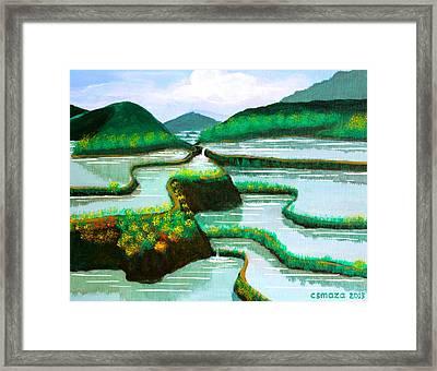 Banaue Framed Print by Cyril Maza