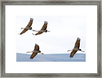 Bank Right Framed Print by Mike Dawson