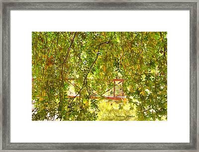 Bridge At Cuesta Canyon Park Framed Print by Barbara Snyder