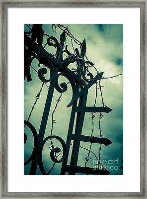 Barbed Wire Gate Framed Print by Carlos Caetano