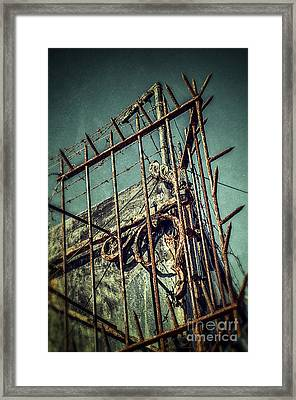 Barbed Wire On Wall Framed Print by Carlos Caetano