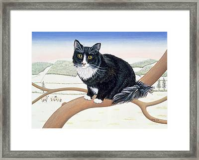 Bare Branches  Number Two Framed Print by Ditz