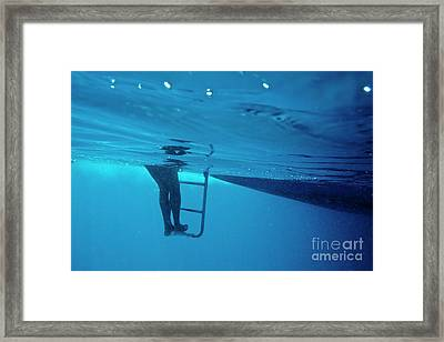 Bare Legs Descending Underwater From The Ladder Of A Boat Framed Print by Sami Sarkis