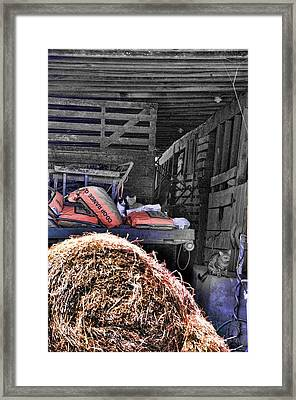 Barn Cats Framed Print by Jan Amiss Photography