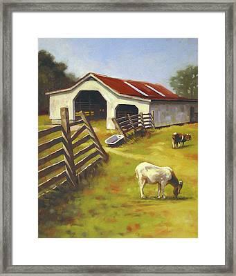 Barn N Goats Framed Print by Todd Baxter