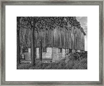 Barnyard Bw Framed Print by Steve Harrington