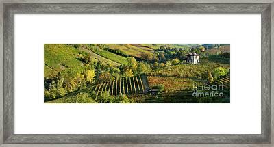 Barolo Vineyards Framed Print by Brian Jannsen