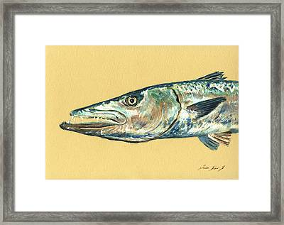 Barracuda Fish Framed Print by Juan  Bosco