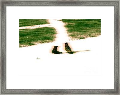 Baseball Ballet  Framed Print by Steven  Digman