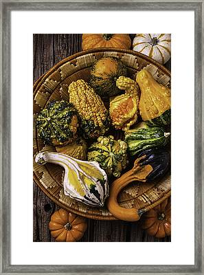 Basket Full Of Autumn Gourds Framed Print by Garry Gay