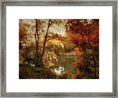 Basking In Autumn Framed Print by Jessica Jenney