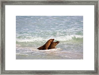 Battle For The Beach Framed Print by Mike  Dawson