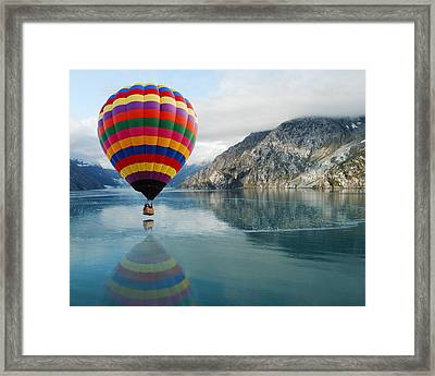 Bay Skimmer Framed Print by Michael Peychich