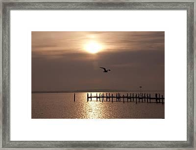 Bay Sunrise Framed Print by Bill Cannon