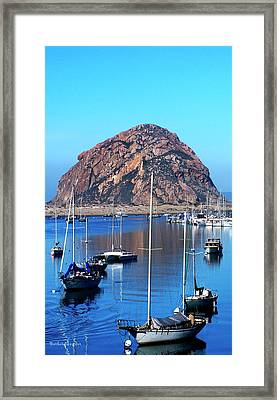 Bay View Detail Morro Bay California Framed Print by Barbara Snyder