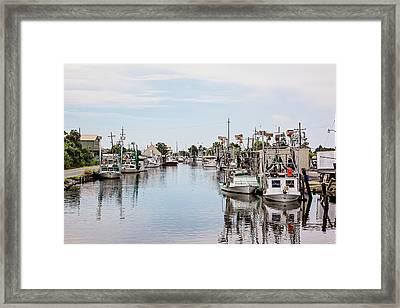 Bayou La Loutre Framed Print by Scott Pellegrin