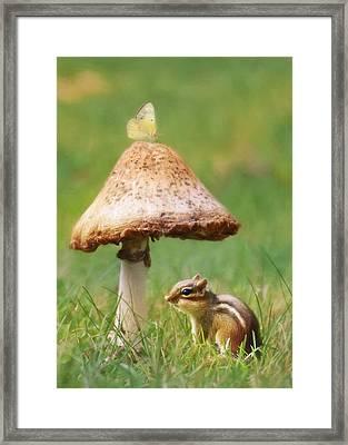 Be My Shelter Framed Print by Lori Deiter