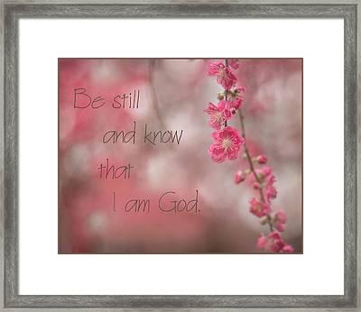 Be Still Framed Print by Lisa Sorrell
