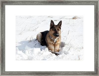 Be Vewy Vewy Quiet Framed Print by Greg Fortier