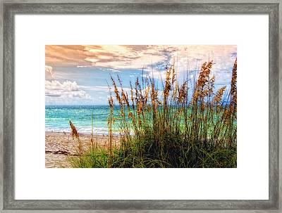 Beach Grass II Framed Print by Gina Cormier