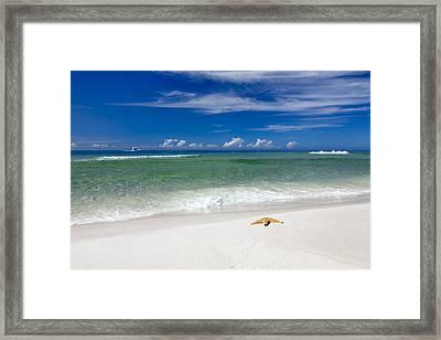 Beach Splendour Framed Print by Janet Fikar