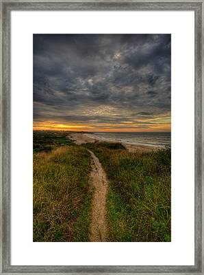 Beach Trail Framed Print by Mike Horvath
