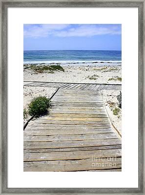 Beach Walk Framed Print by Carol Groenen