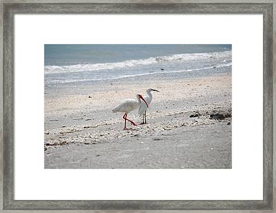 Beachcombers Framed Print by Peter  McIntosh