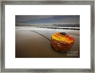 Beached Mooring Buoy Framed Print by Meirion Matthias