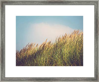 Beachgrass Framed Print by Wim Lanclus