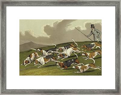 Beagles Framed Print by Henry Thomas Alken