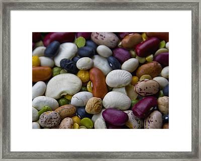 Beans Of Many Colors Framed Print by LeeAnn McLaneGoetz McLaneGoetzStudioLLCcom