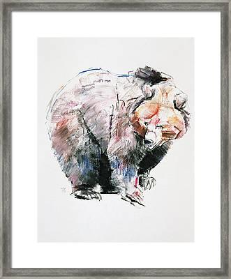 Bear Framed Print by Mark Adlington