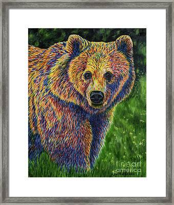 Bear Framed Print by Veikko Suikkanen