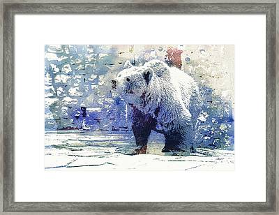 Bear Walk Framed Print by Jutta Maria Pusl