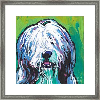 Beardie Framed Print by Lea S