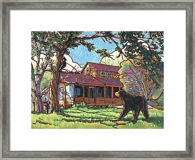 Bears At Barton Cabin Framed Print by Nadi Spencer