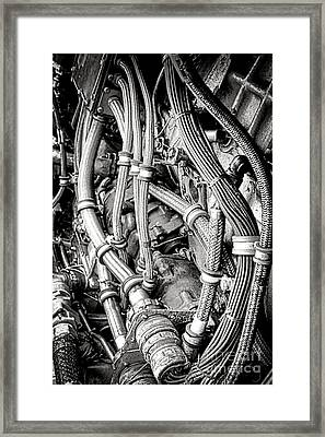 Beating Heart Framed Print by Olivier Le Queinec