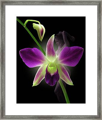 Beauties Framed Print by Torie Tiffany
