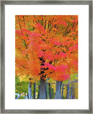 Beautiful Autumn Day Framed Print by Lanjee Chee