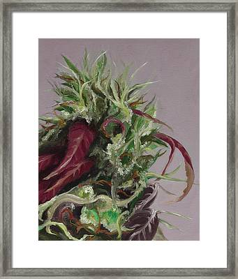 Beautiful Girl Framed Print by Cristin Paige