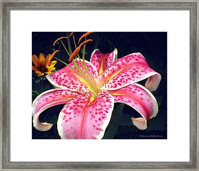 Beautiful Lily Framed Print by Kathy Krause