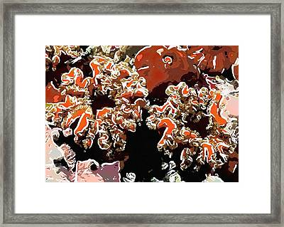 Beautiful Marine Plants 5 Framed Print by Lanjee Chee